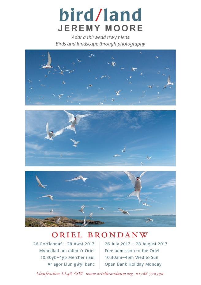 A4_birdland_poster